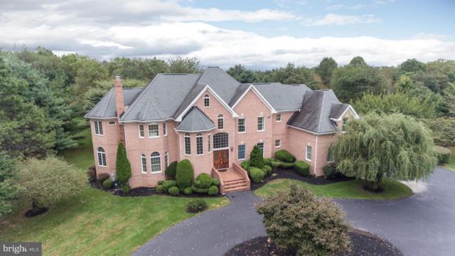10307 Castlefield Street, ELLICOTT CITY, MD 21042 (#1006136364) :: Colgan Real Estate