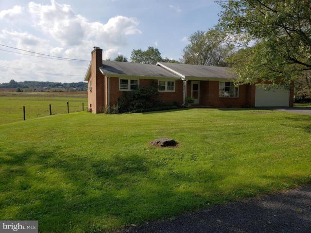 275 Edgewater Drive, CHAMBERSBURG, PA 17202 (#1006143460) :: Remax Preferred | Scott Kompa Group