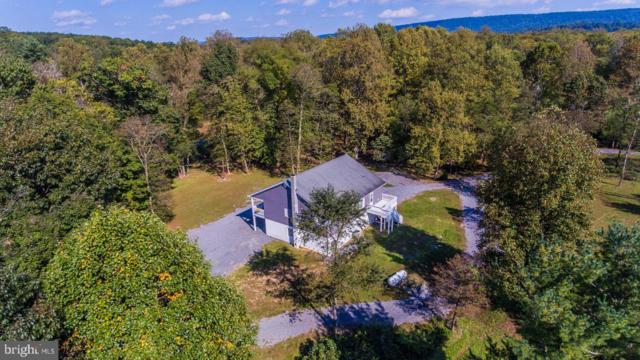 181 Bass Lane, WINCHESTER, VA 22603 (#1006657570) :: Remax Preferred | Scott Kompa Group
