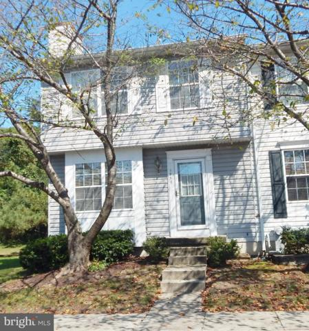 1250 Castine Court, PASADENA, MD 21122 (#1007075062) :: Charis Realty Group