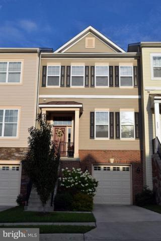 111 Kingsley Drive, WINCHESTER, VA 22602 (#1007366640) :: Labrador Real Estate Team