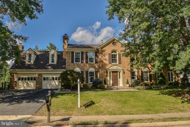 15452 Meherrin Drive, CENTREVILLE, VA 20120 (#1007543914) :: Colgan Real Estate
