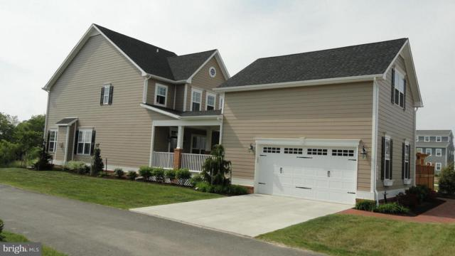 203 Mchenny Court Court, CHESTER, MD 21619 (#1007698200) :: Colgan Real Estate