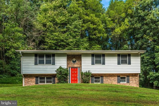 4310 Rolling Acres Court, MOUNT AIRY, MD 21771 (#1007853708) :: Remax Preferred | Scott Kompa Group