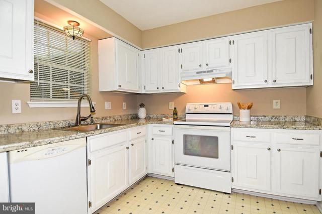18926 Treebranch Terrace, GERMANTOWN, MD 20874 (#1008180126) :: Great Falls Great Homes