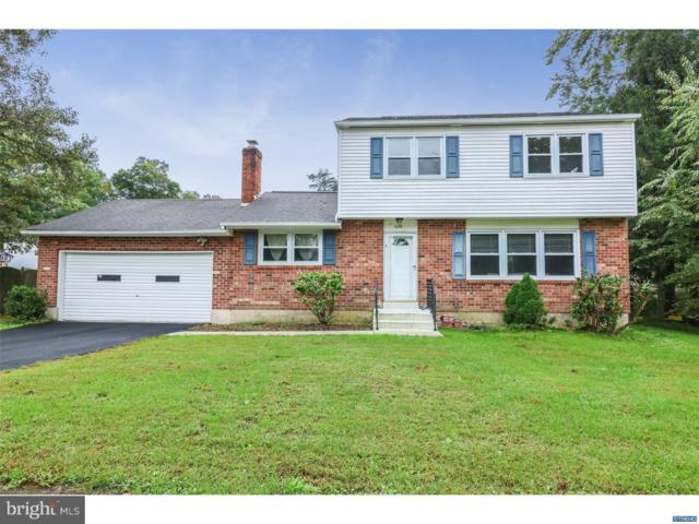 438 W Hanna Drive, NEWARK, DE 19702 (#1008356042) :: Brandon Brittingham's Team