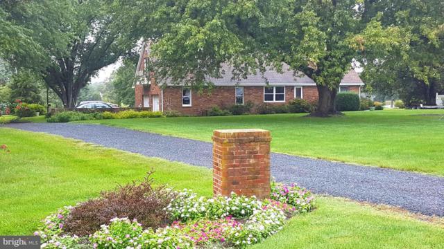 208-- Shipping Creek Drive, STEVENSVILLE, MD 21666 (#1009233260) :: Colgan Real Estate