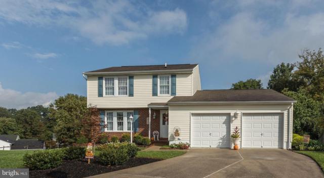 8913 Golden Tree Lane, BALTIMORE, MD 21221 (#1009290294) :: Colgan Real Estate