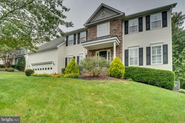 19 Ludwell Lane, STAFFORD, VA 22554 (#1009909030) :: Colgan Real Estate
