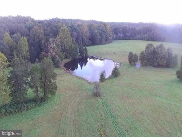 Louisianna Road, LOCUST GROVE, VA 22508 (#1009919580) :: The Licata Group/Keller Williams Realty