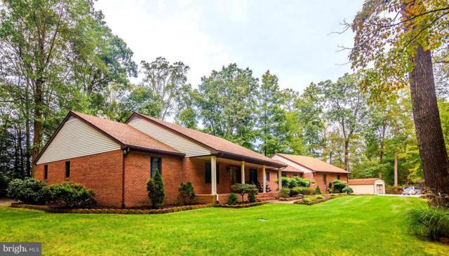 8936 Lynch Drive, DELMAR, MD 21875 (#1009928848) :: Colgan Real Estate