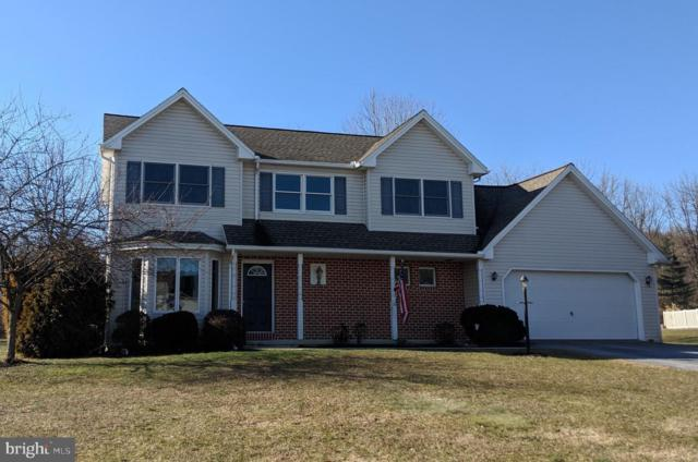223 Putters Circle, DILLSBURG, PA 17019 (#1009950888) :: Benchmark Real Estate Team of KW Keystone Realty