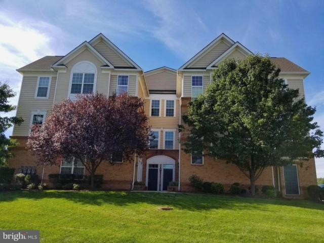 43371 Locust Dale Terrace #104, ASHBURN, VA 20147 (#1009956578) :: The Greg Wells Team