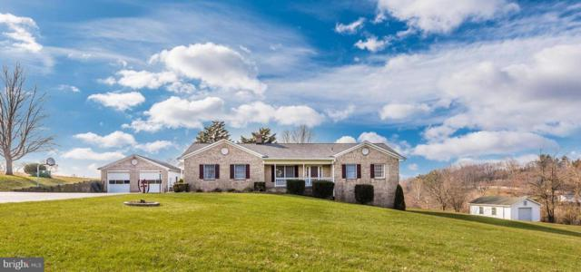 9416 Hollow Road, MIDDLETOWN, MD 21769 (#MDFR100694) :: The Maryland Group of Long & Foster