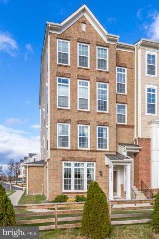 43419 Town Gate Square, CHANTILLY, VA 20152 (#VALO119574) :: SURE Sales Group