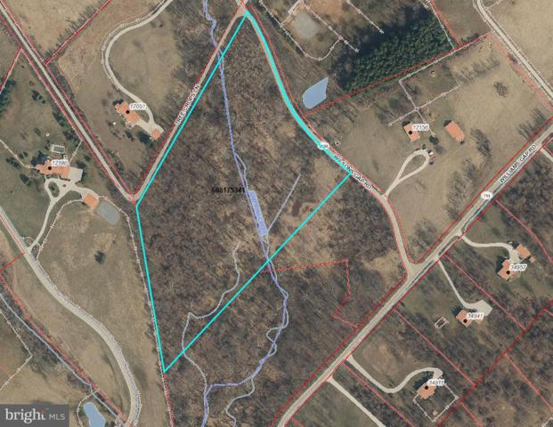 Wilsons Gap Road, ROUND HILL, VA 20141 (#VALO120274) :: Great Falls Great Homes