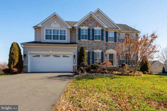 713 Blossom Tree Road, CULPEPER, VA 22701 (#VACU119792) :: Great Falls Great Homes