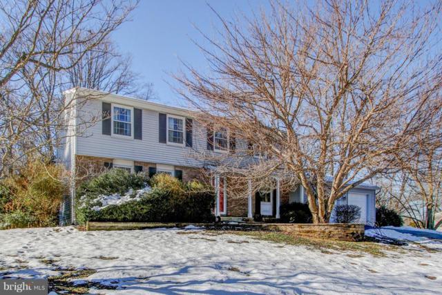 10613 Cavalcade Street, GREAT FALLS, VA 22066 (#VAFX748214) :: Colgan Real Estate
