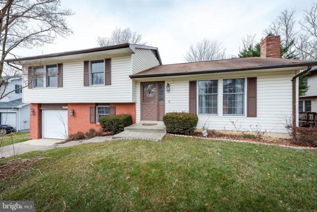 6172 Wicker Basket Court, COLUMBIA, MD 21044 (#MDHW209734) :: Colgan Real Estate