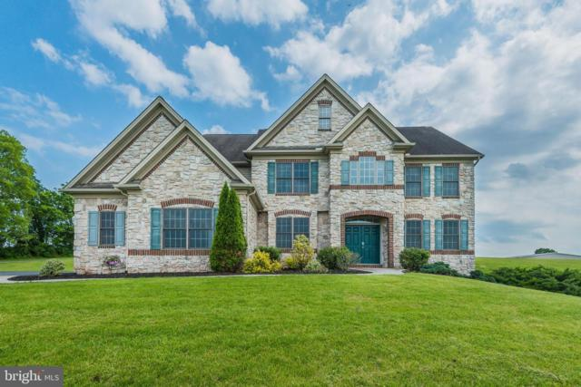 51 Spring Lane Road, DILLSBURG, PA 17019 (#PAYK109000) :: The Heather Neidlinger Team With Berkshire Hathaway HomeServices Homesale Realty