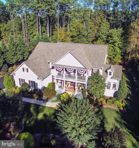 10519 Wildbrooke Court, SPOTSYLVANIA, VA 22551 (#VASP190646) :: Colgan Real Estate