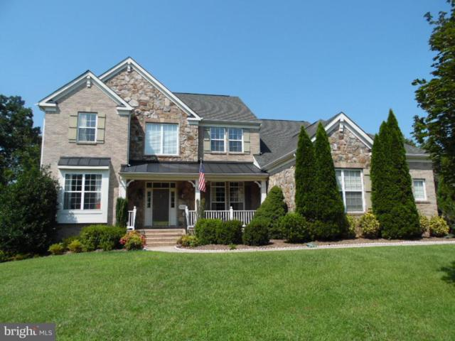 43341 Cedar Pond Place, CHANTILLY, VA 20152 (#VALO315132) :: The Gus Anthony Team
