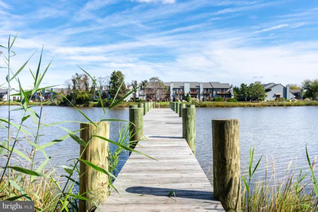 109 Amanda Frances Lane, STEVENSVILLE, MD 21666 (#MDQA136702) :: Great Falls Great Homes