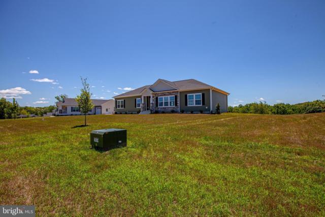 112 Hickory Hill Overlook Court, FREDERICKSBURG, VA 22405 (#VAST200756) :: Tessier Real Estate
