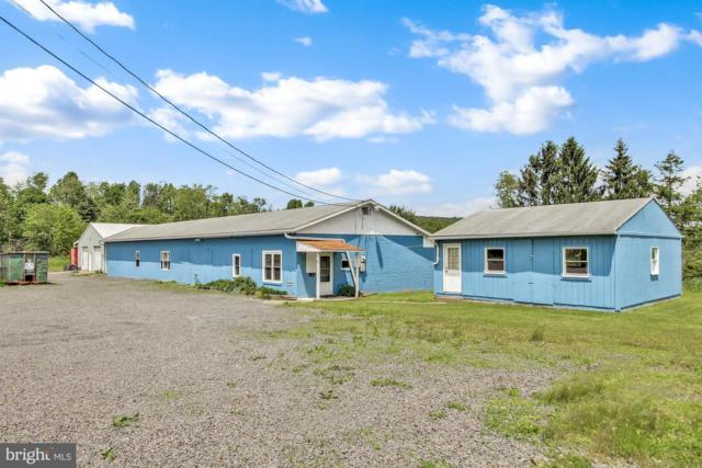 8 Mountain Road, NEW BLOOMFIELD, PA 17068 (#PAPY100394) :: Erik Hoferer & Associates