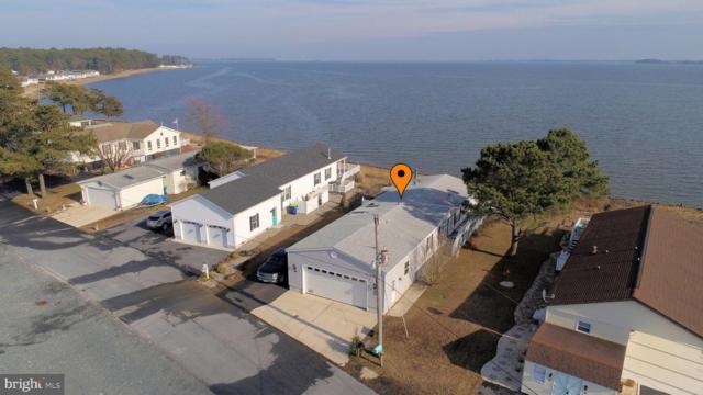 34660 W Harbor Drive #13846, MILLSBORO, DE 19966 (#DESU132518) :: Coastal Life Realty Group