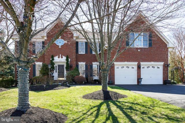 43753 Welty Court, ASHBURN, VA 20147 (#VALO353882) :: SURE Sales Group