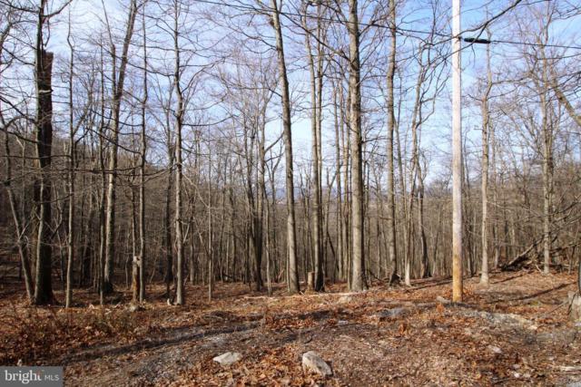 Applewood Drive, FRONT ROYAL, VA 22630 (#VAWR133762) :: Colgan Real Estate
