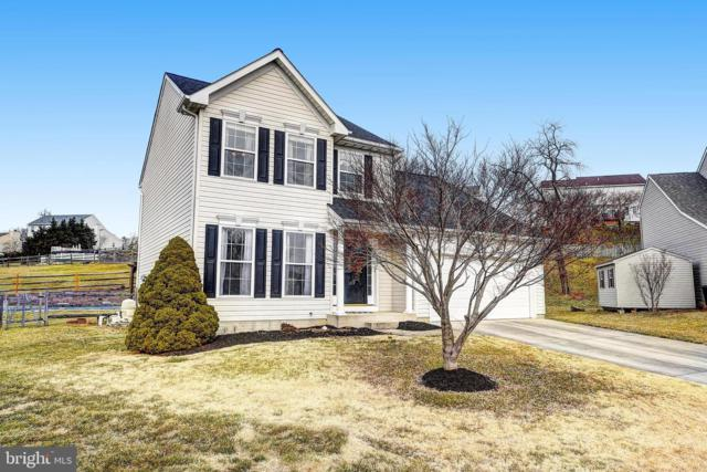 407 Drum Point, PERRYVILLE, MD 21903 (#MDCC158438) :: Colgan Real Estate