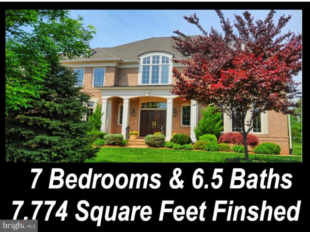 23077 Oglethorpe Court, ASHBURN, VA 20148 (#VALO354526) :: Colgan Real Estate