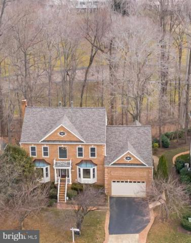 20440 Swan Creek Court, STERLING, VA 20165 (#VALO355100) :: Great Falls Great Homes