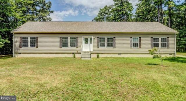 4954 Skeet Club Road, HURLOCK, MD 21643 (#MDDO121766) :: Brandon Brittingham's Team