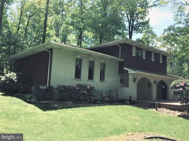 109 Hogan Drive, AUBURN, PA 17922 (#PASK124456) :: The Heather Neidlinger Team With Berkshire Hathaway HomeServices Homesale Realty