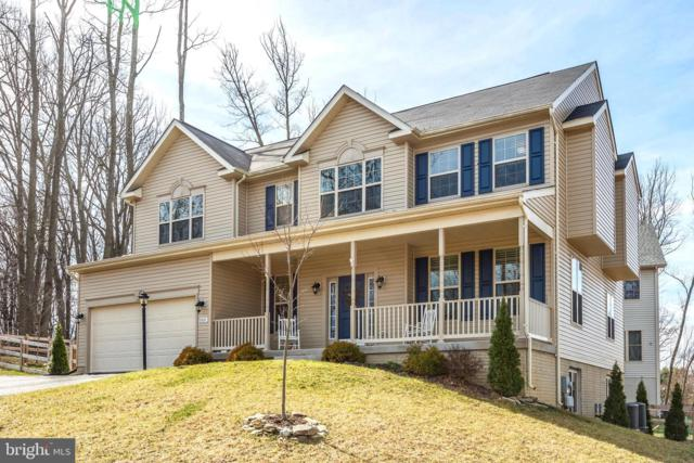 10801 Ridgewood Place, NEW MARKET, MD 21774 (#MDFR243254) :: Great Falls Great Homes