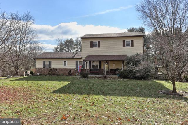 534 Birds Hill Road, PINE GROVE, PA 17963 (#PASK124896) :: The Joy Daniels Real Estate Group