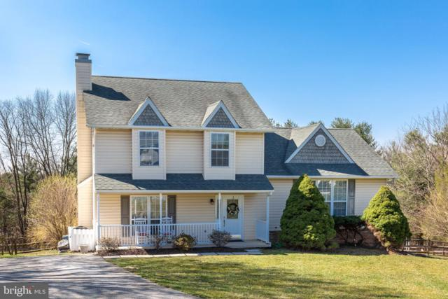 491 Tracy Court, WESTMINSTER, MD 21157 (#MDCR187204) :: The Daniel Register Group