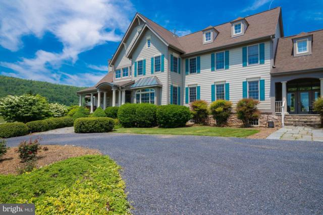 17180 Simmental Lane, ROUND HILL, VA 20141 (#VALO379668) :: Pearson Smith Realty