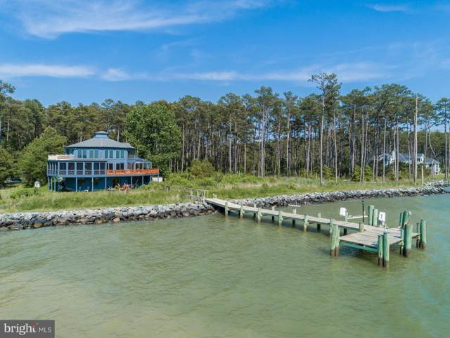 3962 Punch Island Road, TAYLORS ISLAND, MD 21669 (#MDDO123288) :: Advance Realty Bel Air, Inc