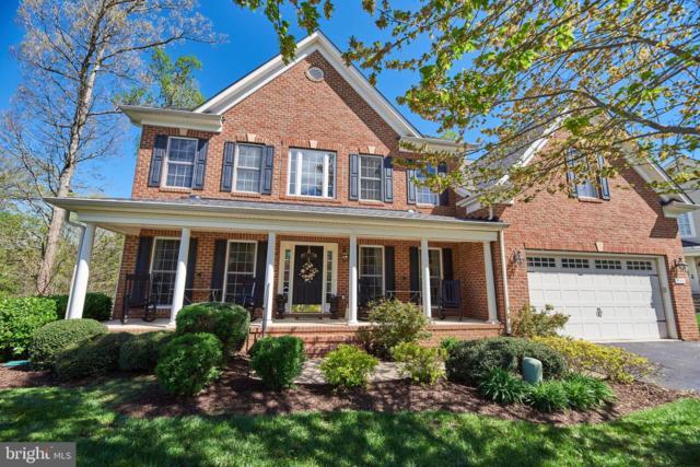 10314 Litchfield Drive, SPOTSYLVANIA, VA 22553 (#VASP211380) :: Colgan Real Estate