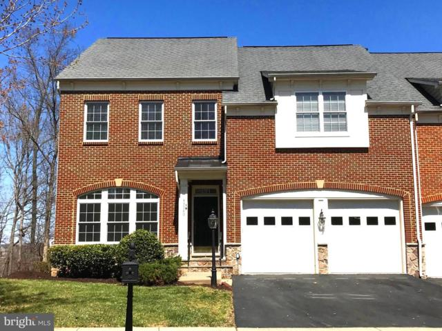 43580 Merchant Mill Terrace, LEESBURG, VA 20176 (#VALO381042) :: The Greg Wells Team