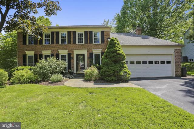 10 Native Dancer Court, NORTH POTOMAC, MD 20878 (#MDMC655586) :: ExecuHome Realty