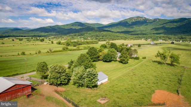 570 Champe Plain Road, ETLAN, VA 22719 (#VAMA107702) :: Charis Realty Group