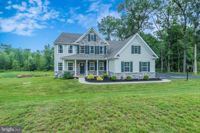 6030 White Pine Drive, ELIZABETHTOWN, PA 17022 (#PALA135054) :: Liz Hamberger Real Estate Team of KW Keystone Realty