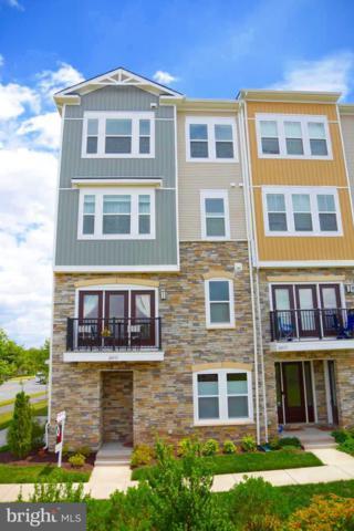 24513 Glenville Grove Terrace, ALDIE, VA 20105 (#VALO387858) :: Pearson Smith Realty