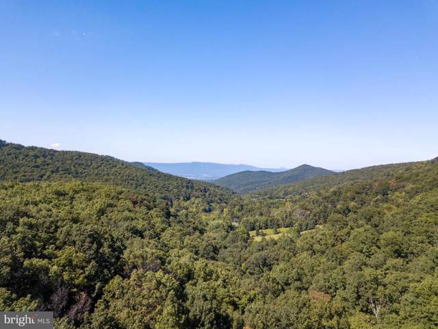 227Acres Dovel Hollow Rd, STANLEY, VA 22851 (#VAPA104560) :: Keller Williams Pat Hiban Real Estate Group