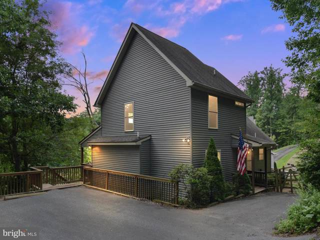 6727 Balmoral Overlook, NEW MARKET, MD 21774 (#MDFR249596) :: ExecuHome Realty